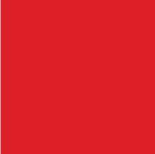 Rojo Pantone